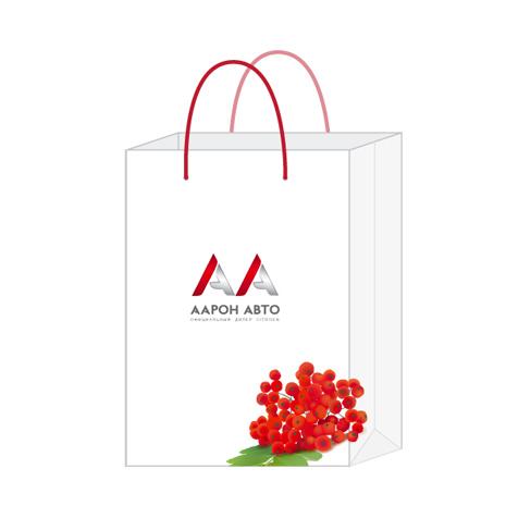 AARON-paket-A3_02_021009