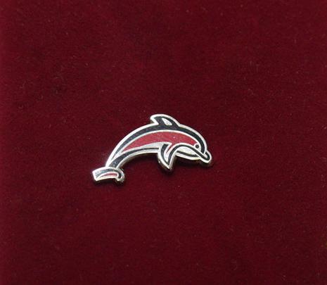серебряный значок с цветной эмалью для рядовых сотрудников